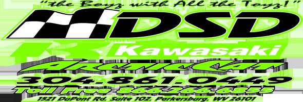 DSD logo 12 no bkgrd