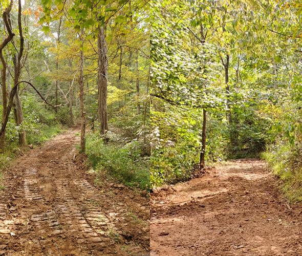 Trails copy